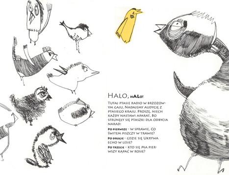 Birds radio - Gedicht.