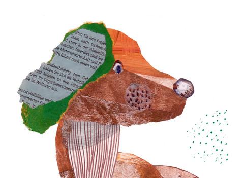 Pies z zielonym uchem.jpg