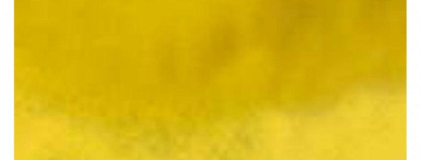 FOLHA CHUMBO AMARELO 43,5X59 C/3 CROMUS