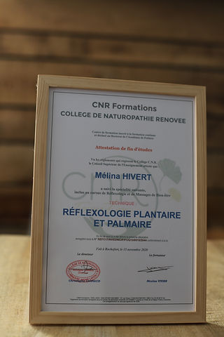 diplome reflecologie plantaire.JPG