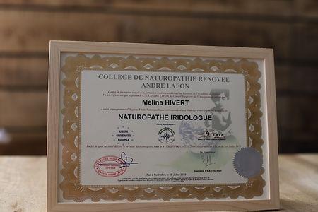 diplome naturopathe iridologue.JPG