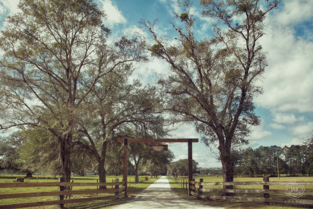 01-orlando-best-venue-rustic-wedding-isola-farms-jarstudio - Copy