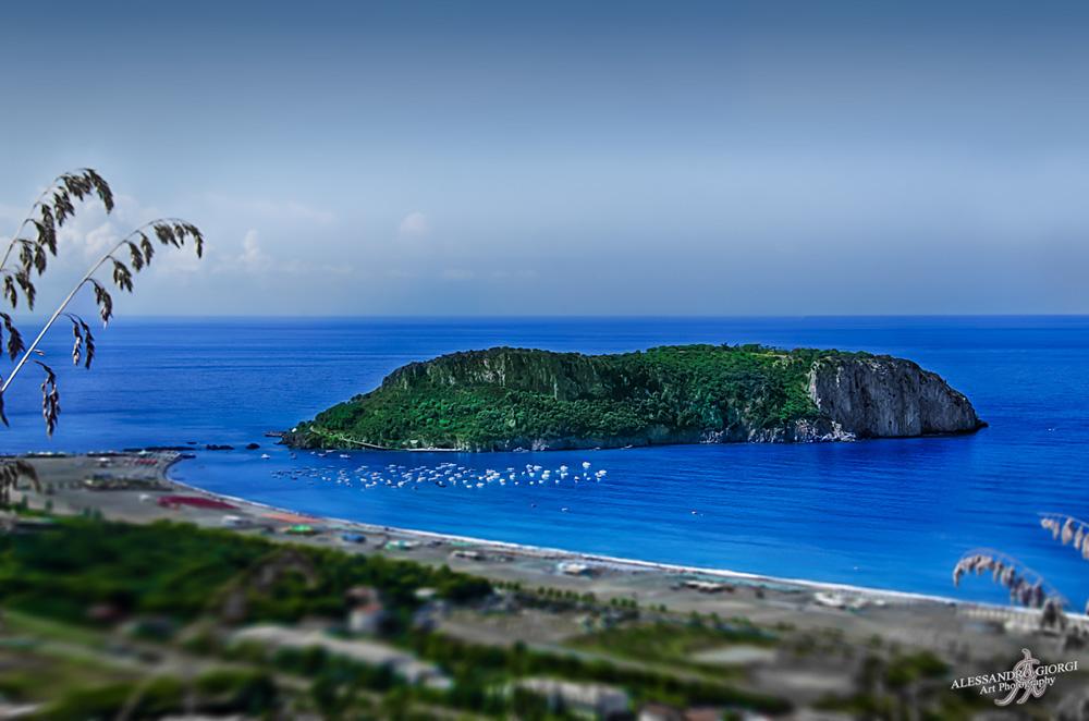 Dino's island