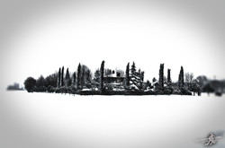 Under the snow (18)