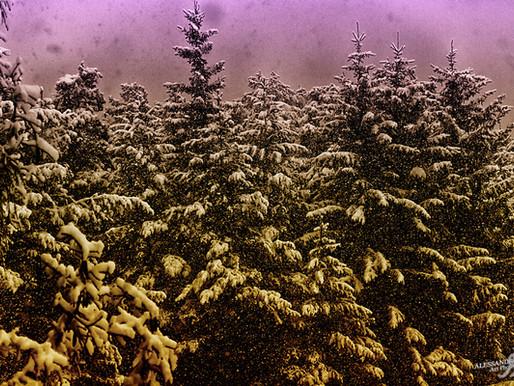 GOONART - Filtered snow