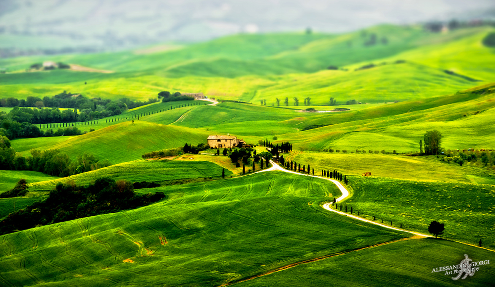 Tuscany's green scapes
