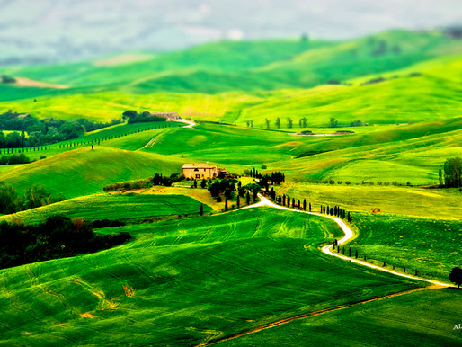 HOUZZ - Tuscany's green scapes