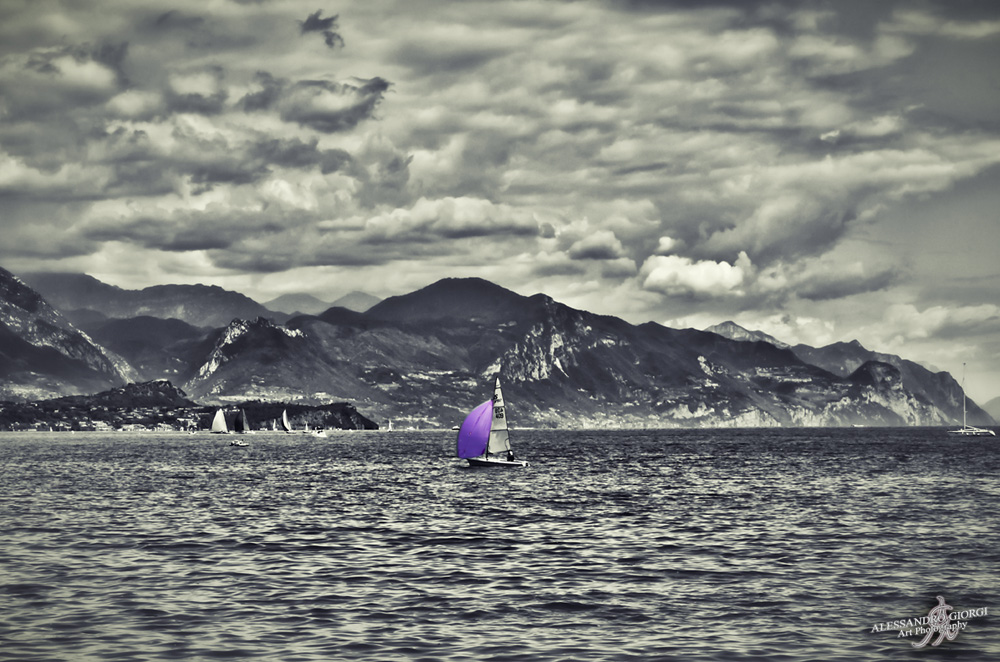 Purple sailing