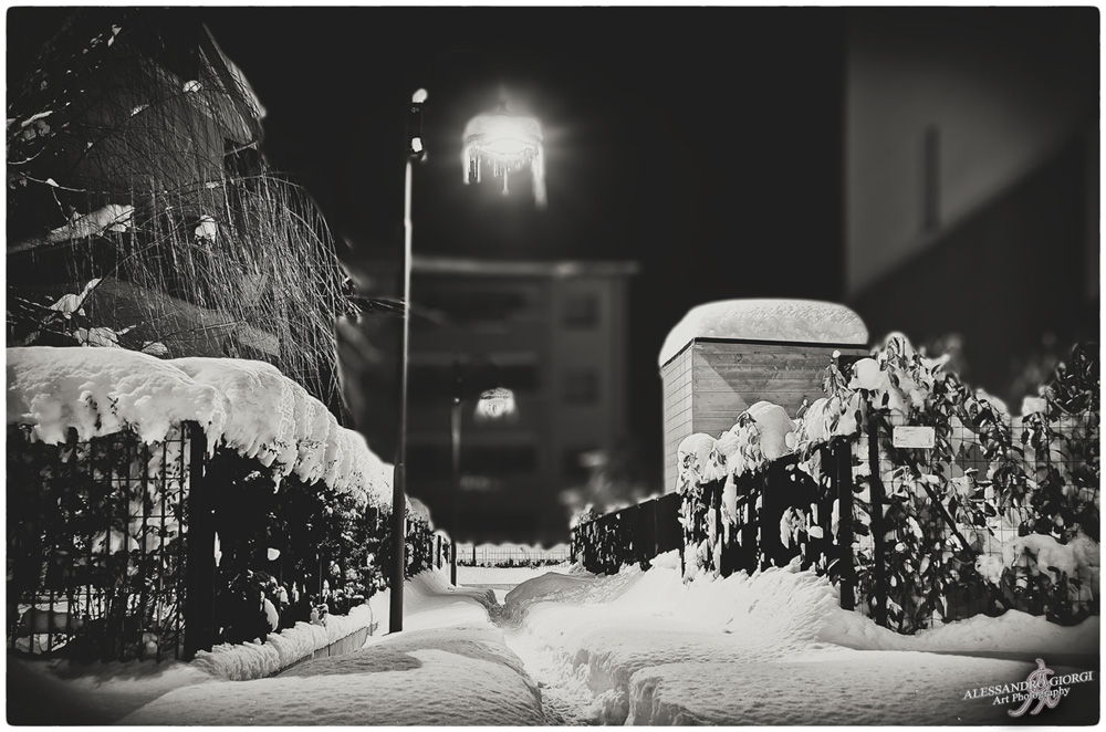 Under the snow (22)