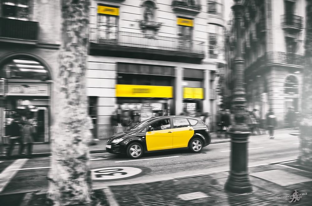 Yellow & Yellow