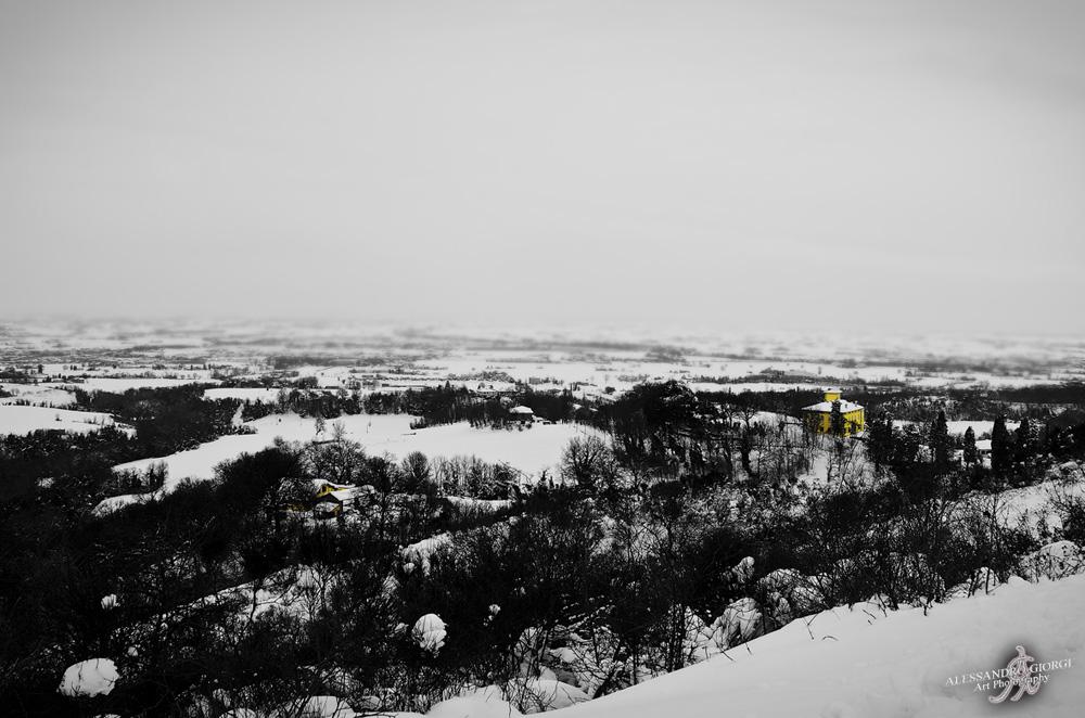 Under the snow (14)