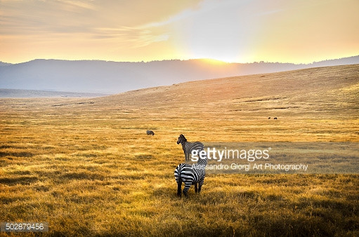 GETTY IMAGES - A new day