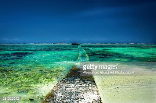 GETTY IMAGES - Zanzi .... Paradise