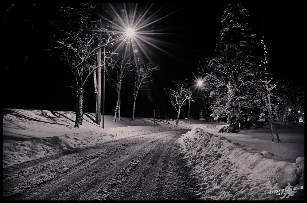 Under the snow (25)
