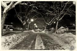 Under the snow (23)