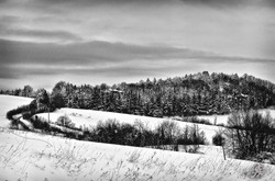 Under the snow (12)