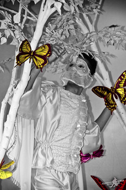 Watching the butterflies