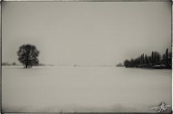 Under the snow (16)