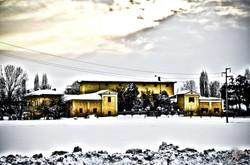 Under the snow (7)