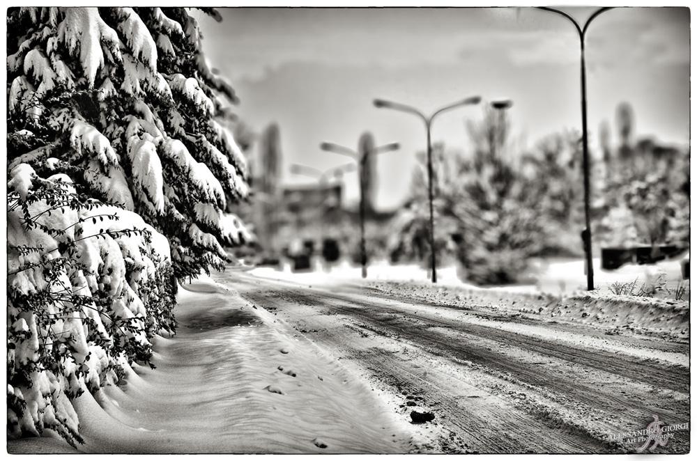Under the snow (1)