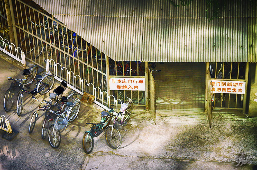 Chinese bike rental