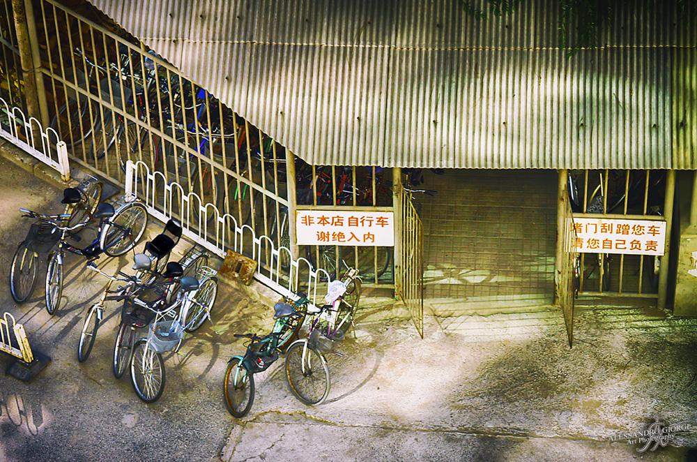 Chinese bike rental
