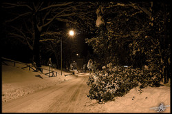 Under the snow (24)