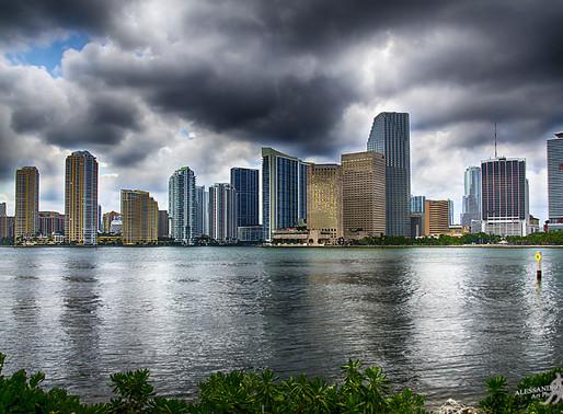 GOONART - Summer in Miami