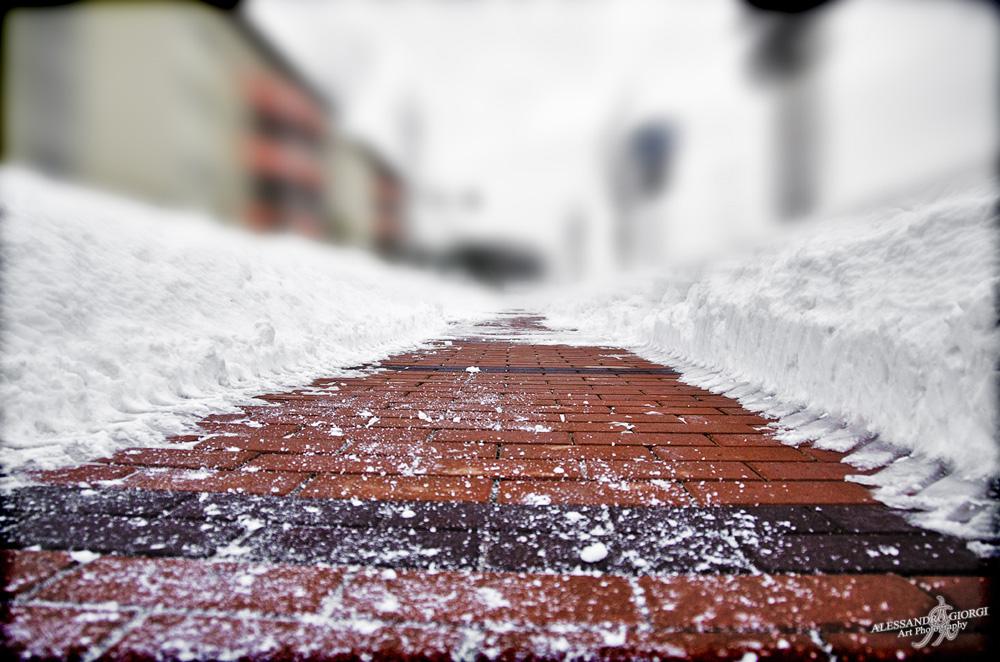 Under the snow (4)