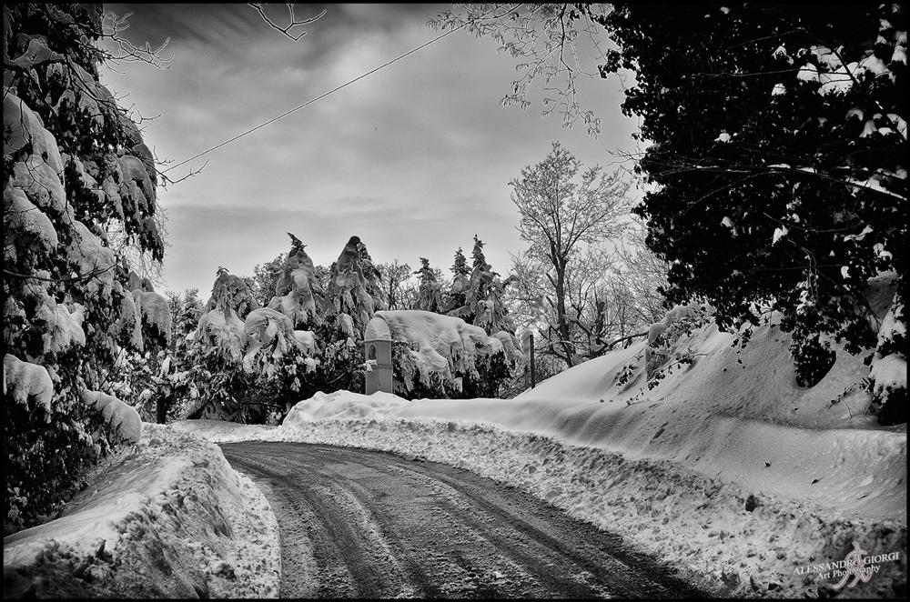 Under the snow (11)