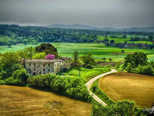 PIXOPOLITAN - Countryside