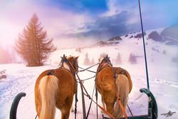 Winter Jaunt