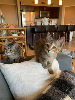 Shaka and Carly 2