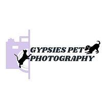 Gypsies Pet Photography.jpg