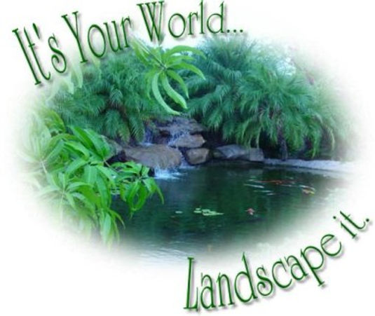 Phoenix Landscaping & Design