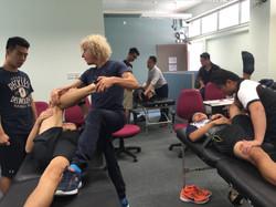 Assisted flexibility training