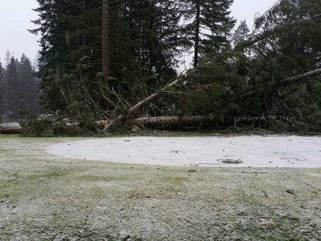 Winter Storm Damage