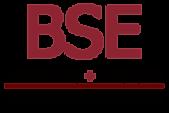 BSE Vertical Logo .png