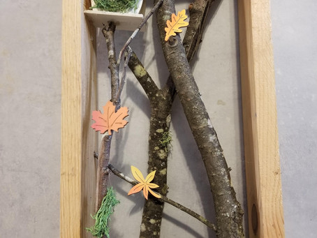 DIY Simple Natural Frame: Woodworking with Kids.