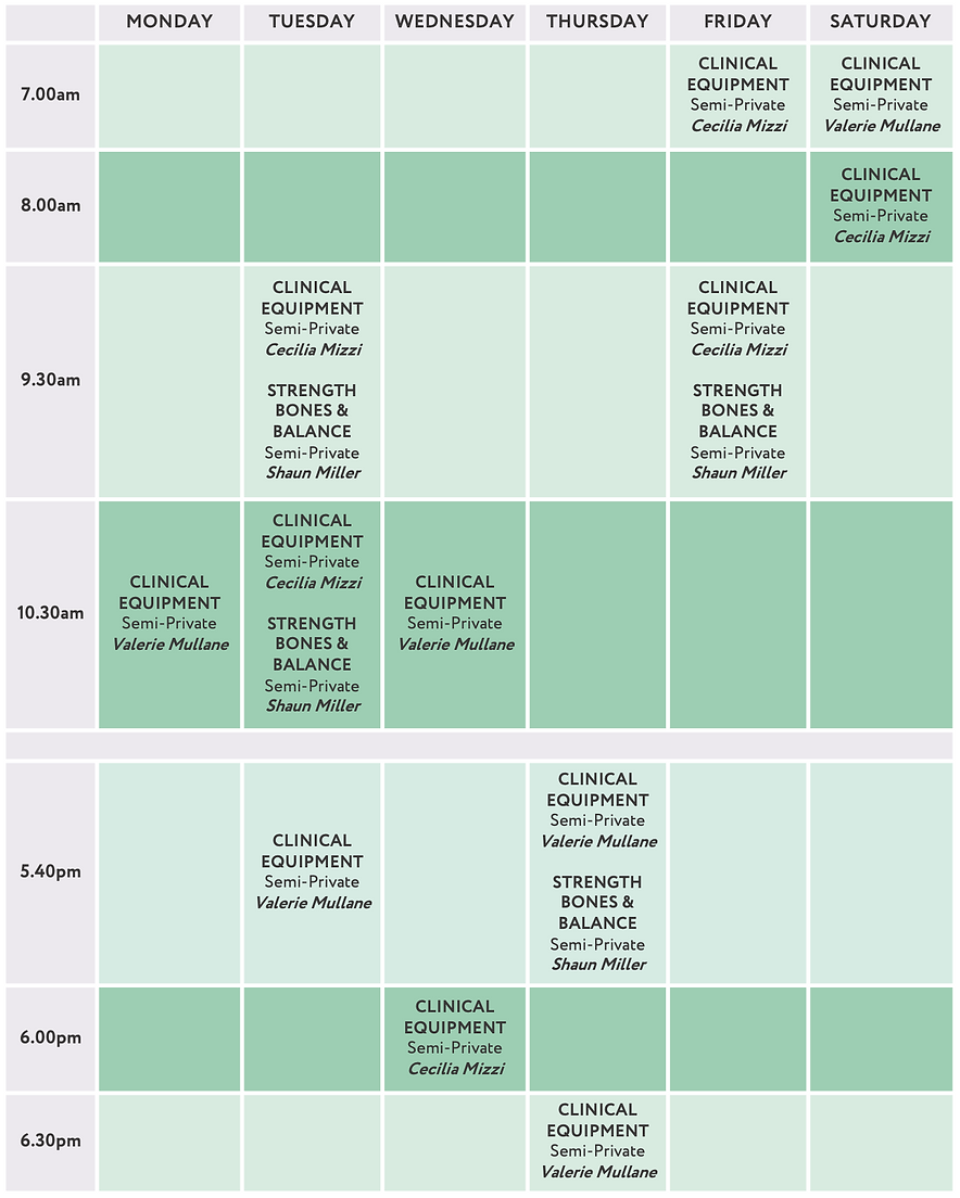 Prana-Physio-Clinical-Exercise-Timetable.png