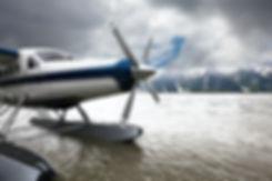 Alaskan Float Plane.jpg
