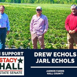 Endorsed and supported by my friend Drew Echols. And thank you to Jarl Echols for his support. Jaemor does a wonderful job feeding this community.