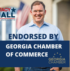 Grateful to receive the Endorsement and support of the Georgia Chamber of Commerce.