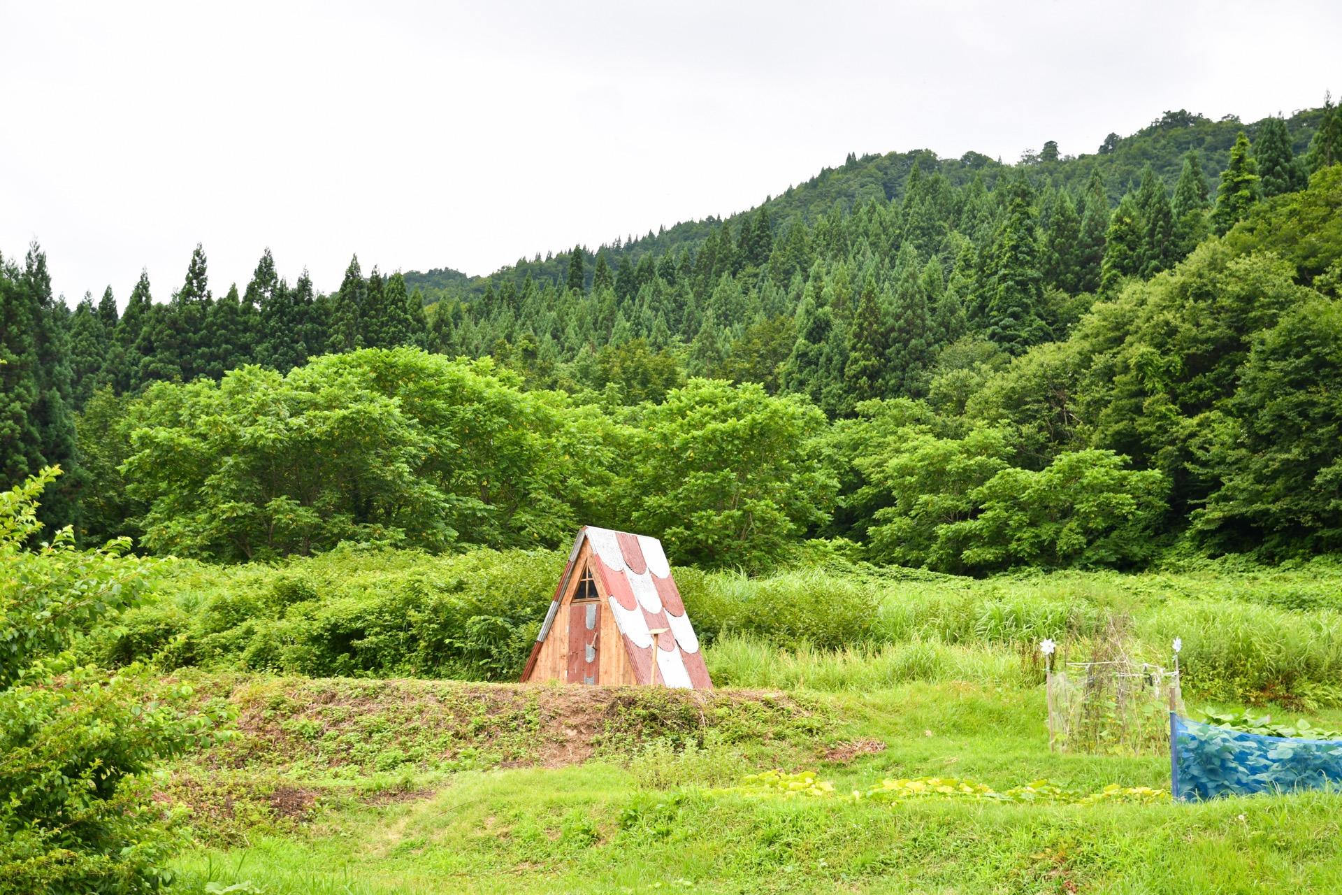 SANKAKU WAVE