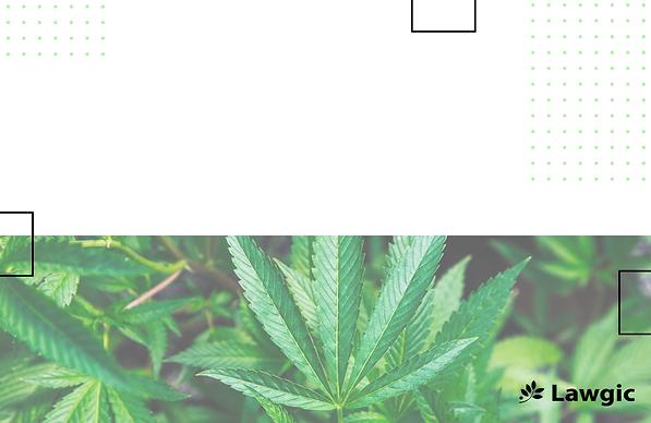 Curso cannabis (5).png