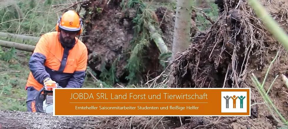 ArbeiterInnen Land und Forstwirtschaft.j