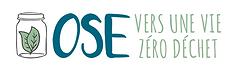 logo_osezd.png