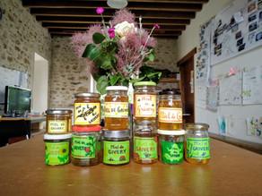 Première récolte de miel!