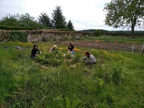 Atelier permaculture du mardi