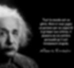 Tout le monde est un génie - Einstein